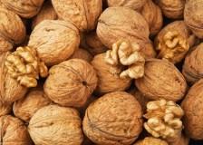 Оказывают ли пользу грецкие орехи для организма?