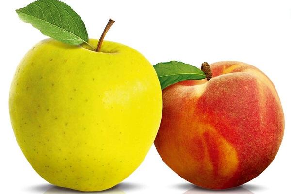 свойства яблок для организма