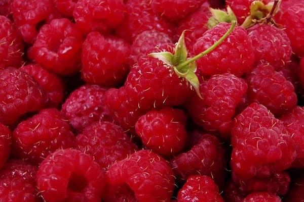 польза и вред ягод малины