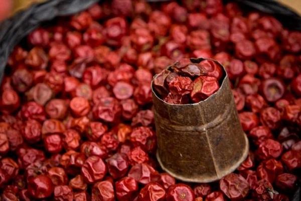 полезные свойства сушеного шиповника
