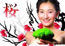 Меню японской диеты на 14 дней и ее особенности