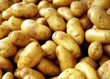 Эффективна ли картофельная диета для похудения и как она соблюдается?