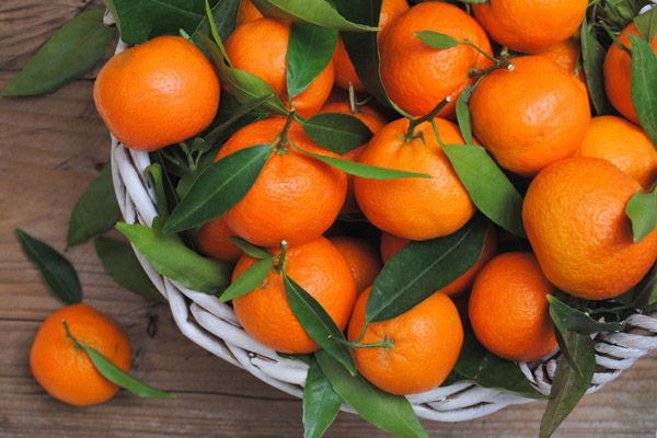 полезные свойства мандарина