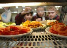 Рациональное питание школьника: важные моменты и особенности
