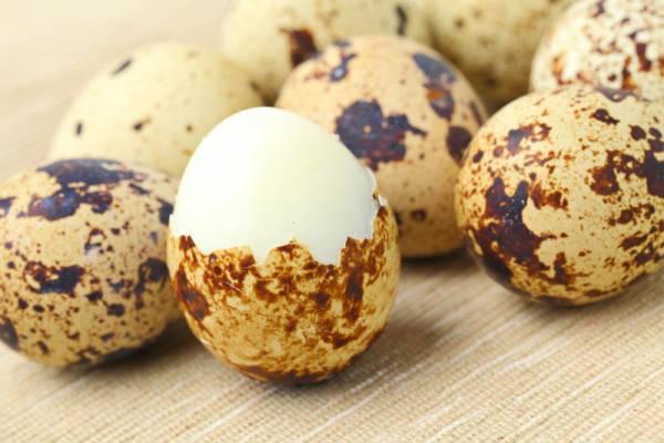 польза перепелиных яиц для человеческого организма