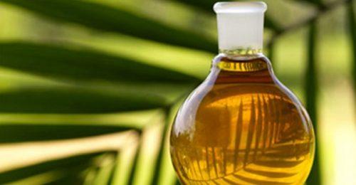 Пальмовое масло: чем вредно и чем полезно?