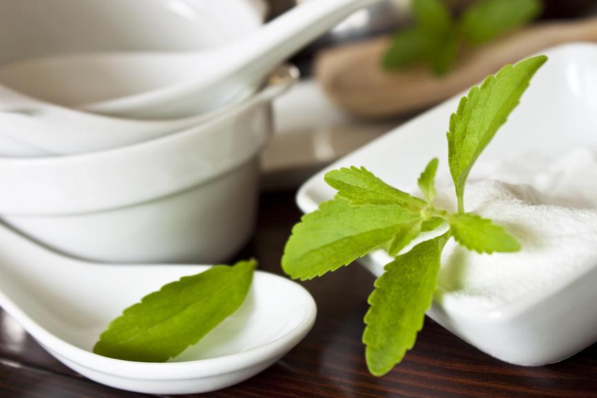 Стевия - зеленый листовой сахар
